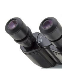 Oculares B-290